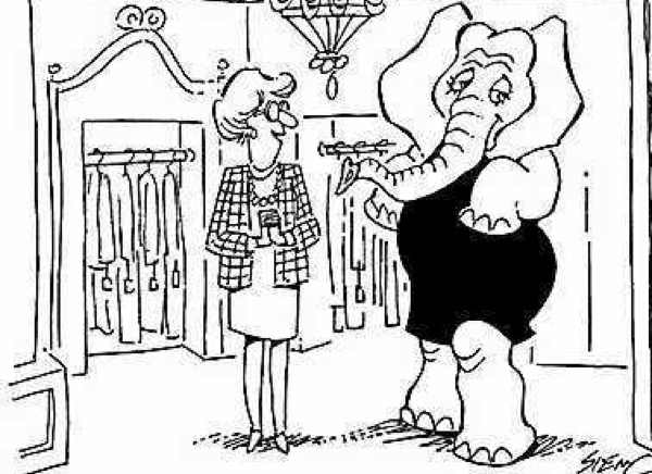 Little Black dress elephant illustration humor