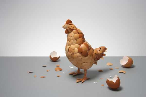 Egg Art Chicken