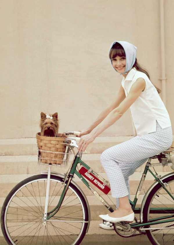 audrey hepburn bicycle dog ballerinas