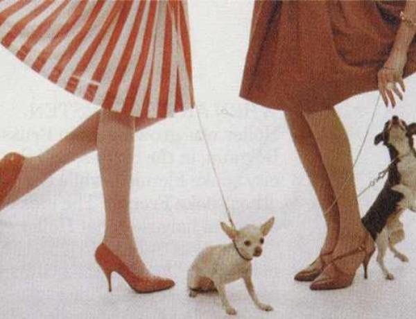 0c603aca479 High heels Archives - TrendSurvivor