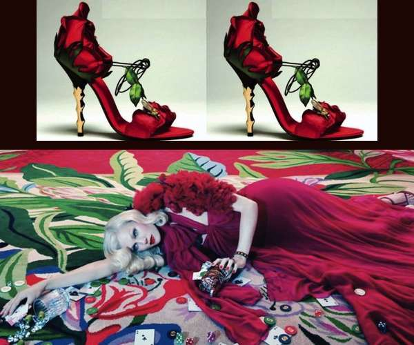 manolo-rose-shoes-and-gucci