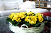 How To Make Your Own Easy Spring Flower Arrangements