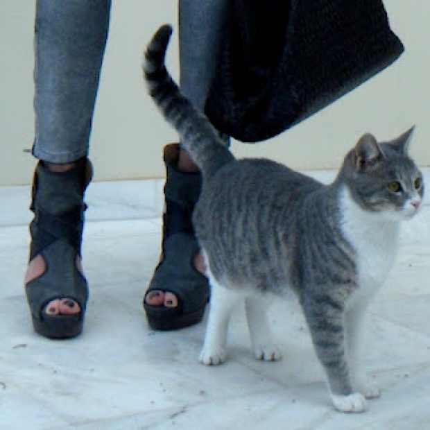 Silver Pants Chloe Boots