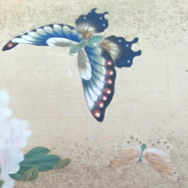 Japanese paintings, flowers and birds, inspiration tattoo, butterfly