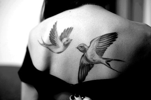 Back, birds tattoos