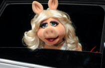 PINKO EVENT MISS PIGGY | I KNOW YOU WANT ME