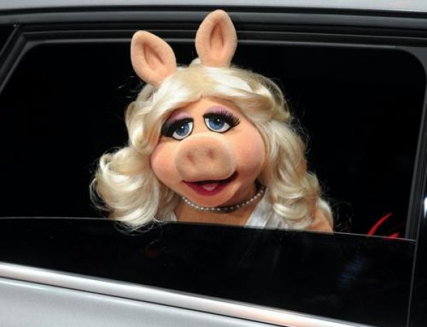 Miss Piggy arrives in car