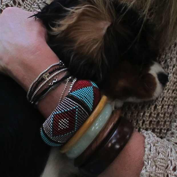 Colored ethnik bracelets dog