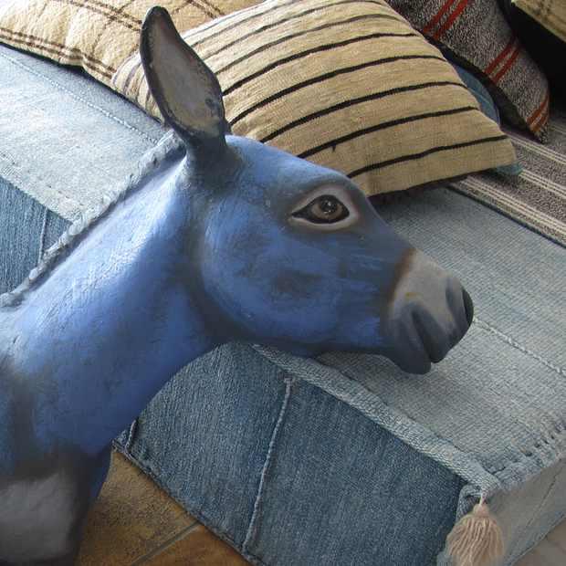 Mykonos Blu Donkey