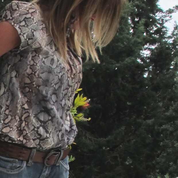 blouse Zara lizard print Casual Boho Chic