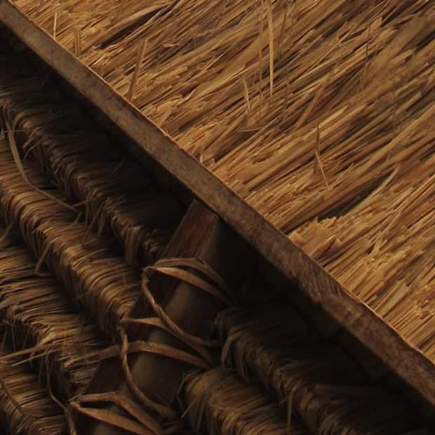ombrella straw
