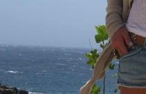 Mykonos Wuthering Shorts