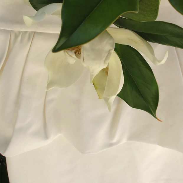 Zara white Peplum skirt and magnolia flower