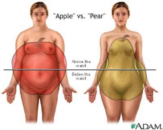 body shape apple and pear