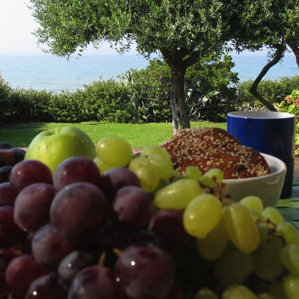 Corfu-Glyfada sea front villa grapes