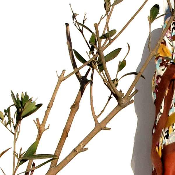 Missoni Silk Dress tree