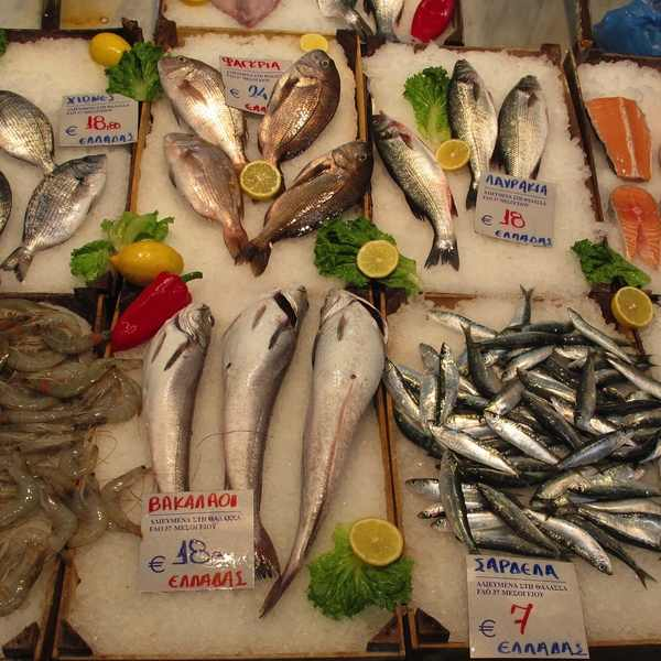 Modiano market Fish