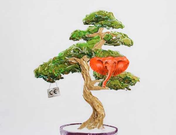Panagiotis Linardakis bonsai