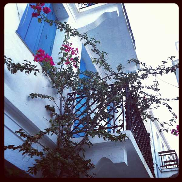 Skopelos view old house, flowers