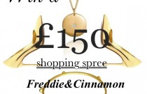 WORLDWIDE GIVEAWAY- Win £150 Gift Voucher- Trendsurvivor Loves Freddie&Cinnamon Jewelry