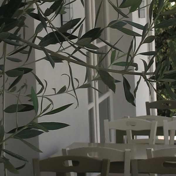 restaurant Glykanisos Thessaloniki