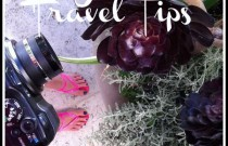 California- LA JOLLA TRAVEL TIPS – The COOL Must Go Places