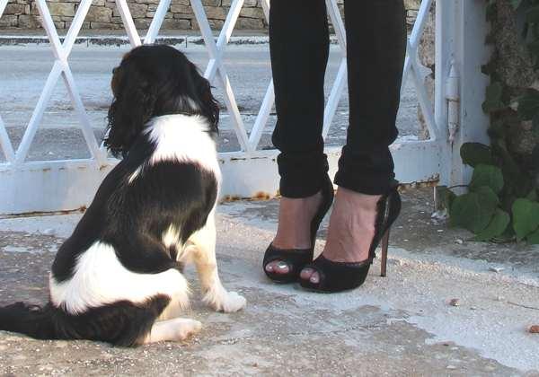 Oliver, black leather shoes