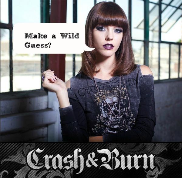 Crash and burn giveaway teaser