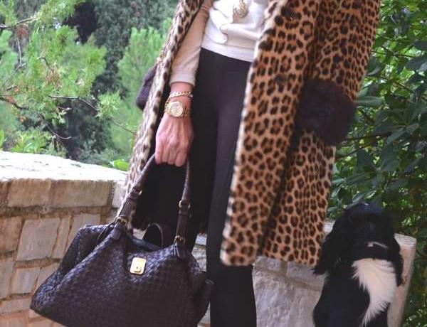 Leopard Coat, Trendsurvivor