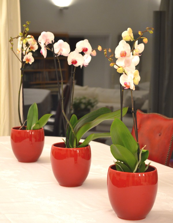 DIY- My Spring Floral Coffee Table Centerpiece-0009