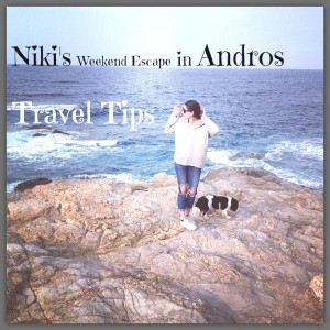 1Niki's Weekend Escape in Andros-0000
