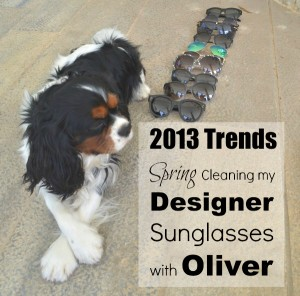 1Spring Cleaning my Designer Sunglasses with Oliver-0014