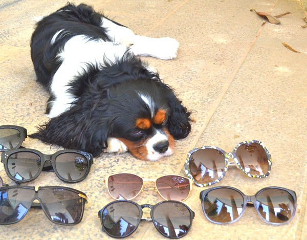 Spring Cleaning my Designer Sunglasses with Oliver-0013