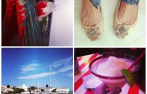 Instagram Pictures- Best of May