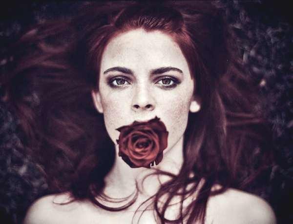 Rose by Aleksandra Zaborowska 10
