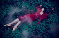 Fashion Blossoms Forever by Aleksandra Zaborowska