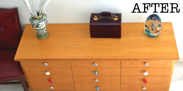 Trendsurvivor- Drawers DIY00