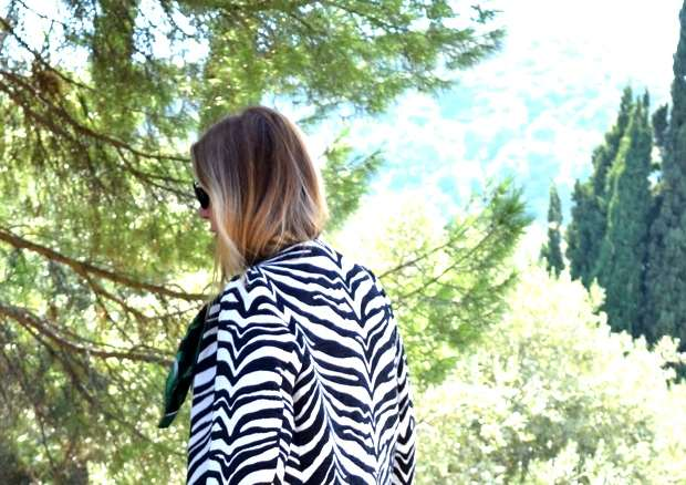 Zebra Black and White coat01