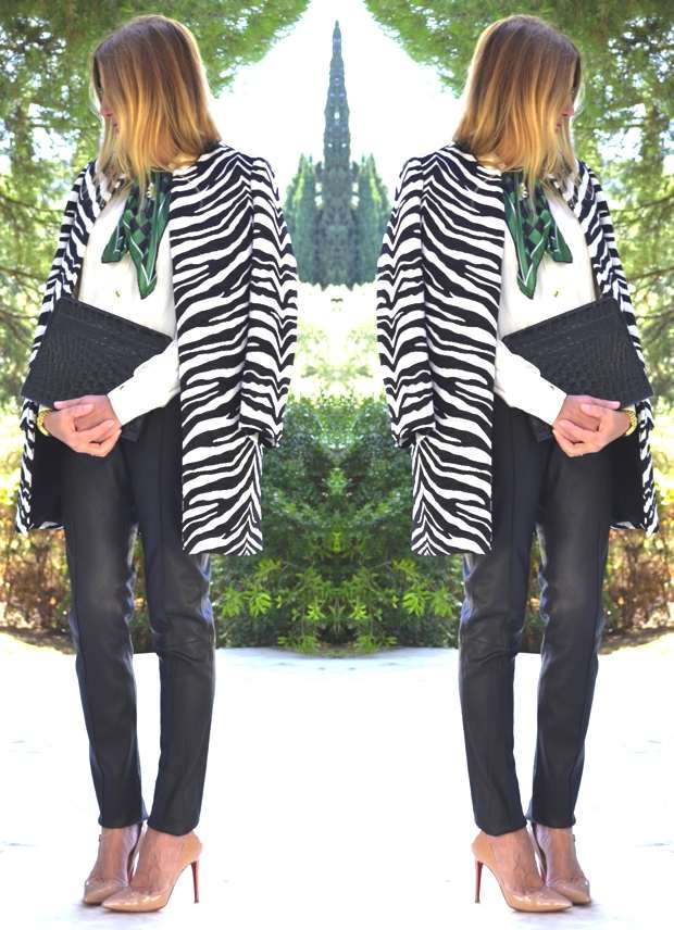 Zebra coat crocodile clutch