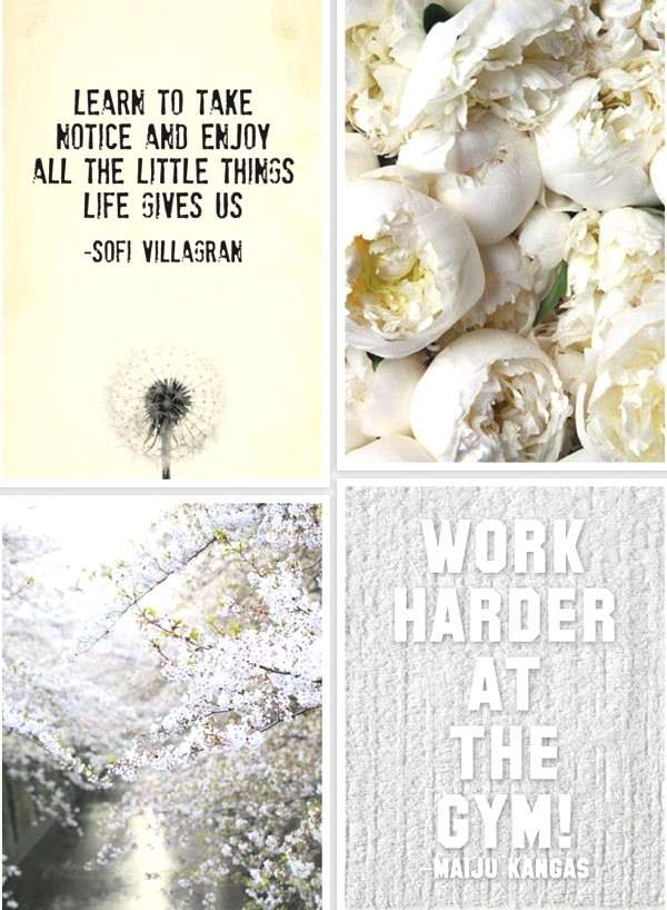 White collage and quotes