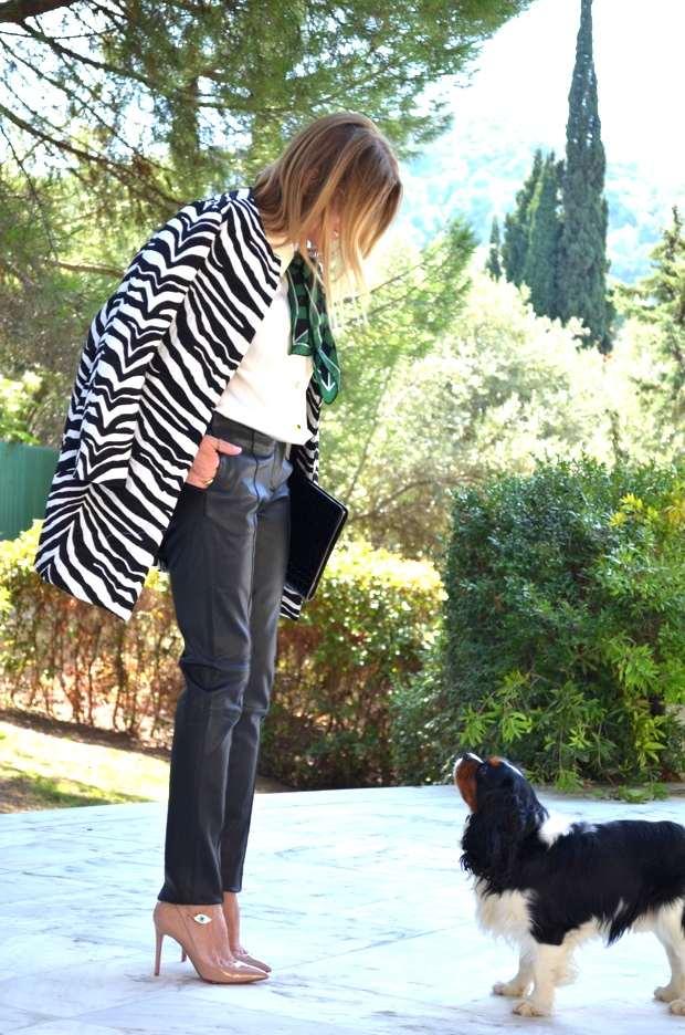 Zebra coat