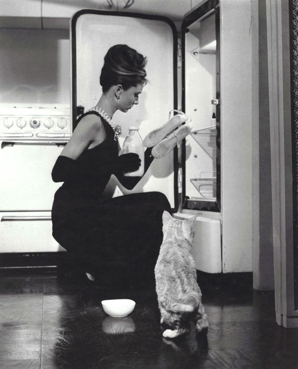 Audrey Hepburn black dress cat