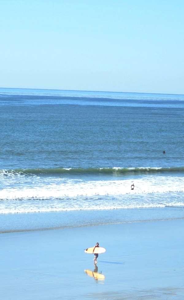 La Jolla beach surfer