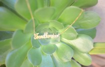 TrendSurvivor Onecklace- My New Personalized Name Jewelry