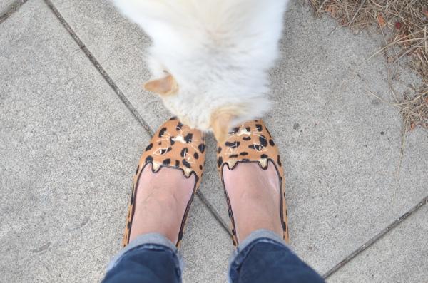 kitty slippers, fluffy cat