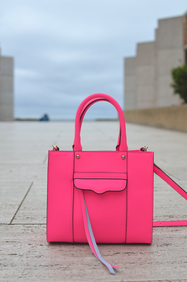 Salk Institute Rebecca Minkkoff bag