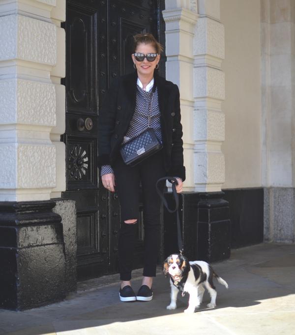 TrendSurvivor Personal Style London baby cavalier Spot