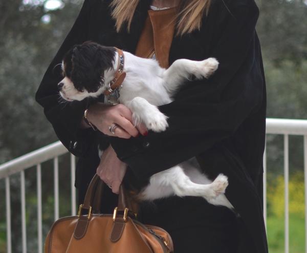 TrendSurvivor Street Style Outfit Leather Jacket- dog