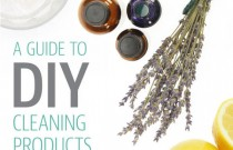 Natural Eco-friendly DIY Cleaning Products