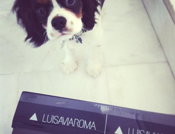 Luisaviaroma.com gift card Giveway